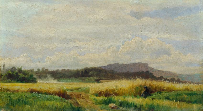 Getreidefeld mit alter Frau von Johann Till der Jüngere