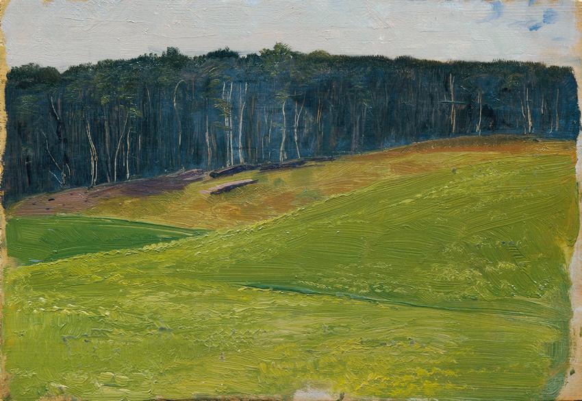 Hellgrüne Wiese gegen dunkle Waldlisière von Otto Friedrich