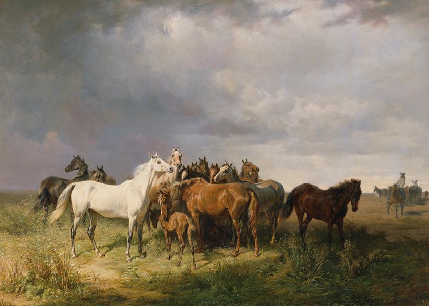 Pferde auf der Puszta von Franz Adam